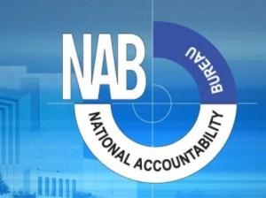 NAB1-495x371