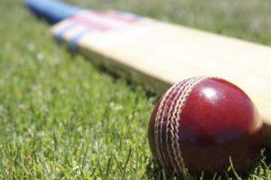 cricket1-495x329