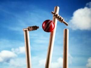 cricket3-495x371