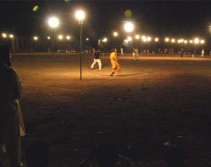 night cricket
