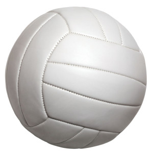 Volleyball-Picture-298x300