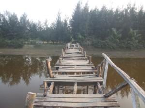bridge-495x371