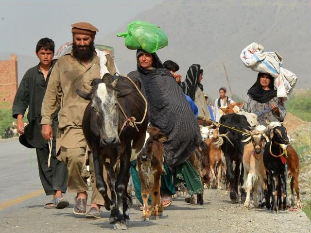 Waziristan-IDPs